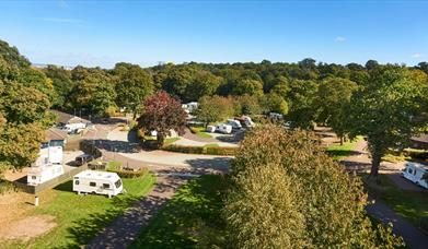 Image of inside Abbey Wood Park with big green trees and Caravan Site around it.